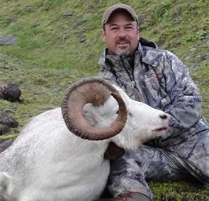 home_page_sheep_2011